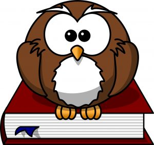 cartoon image of a brown owl sitting on top of a book