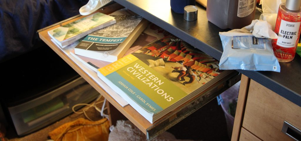 A Western Civilization textbook, along with two English textbooks on Kaylin's desk.