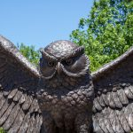 owl statue in center of campus