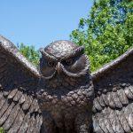 owl statue in center of campus