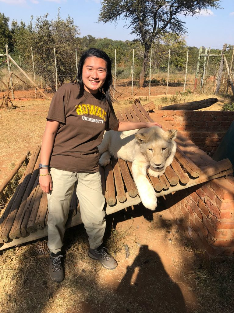 Fiona wears a brown Rowan t-shirt while standing next to a tranquilized lion during a pre-vet club trip.