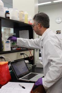 Gaspare Carollo, a biophysics major from Marlton, NJ, works at his summer research internship at Rowan.