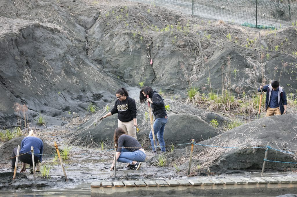 5 people work independently to dig in the mud at the Rowan University Fossil Park