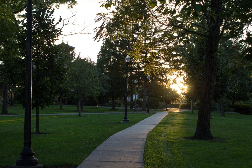 A cement walkway on Rowan's campus with lamp posts, green grass, and trees during sunset.