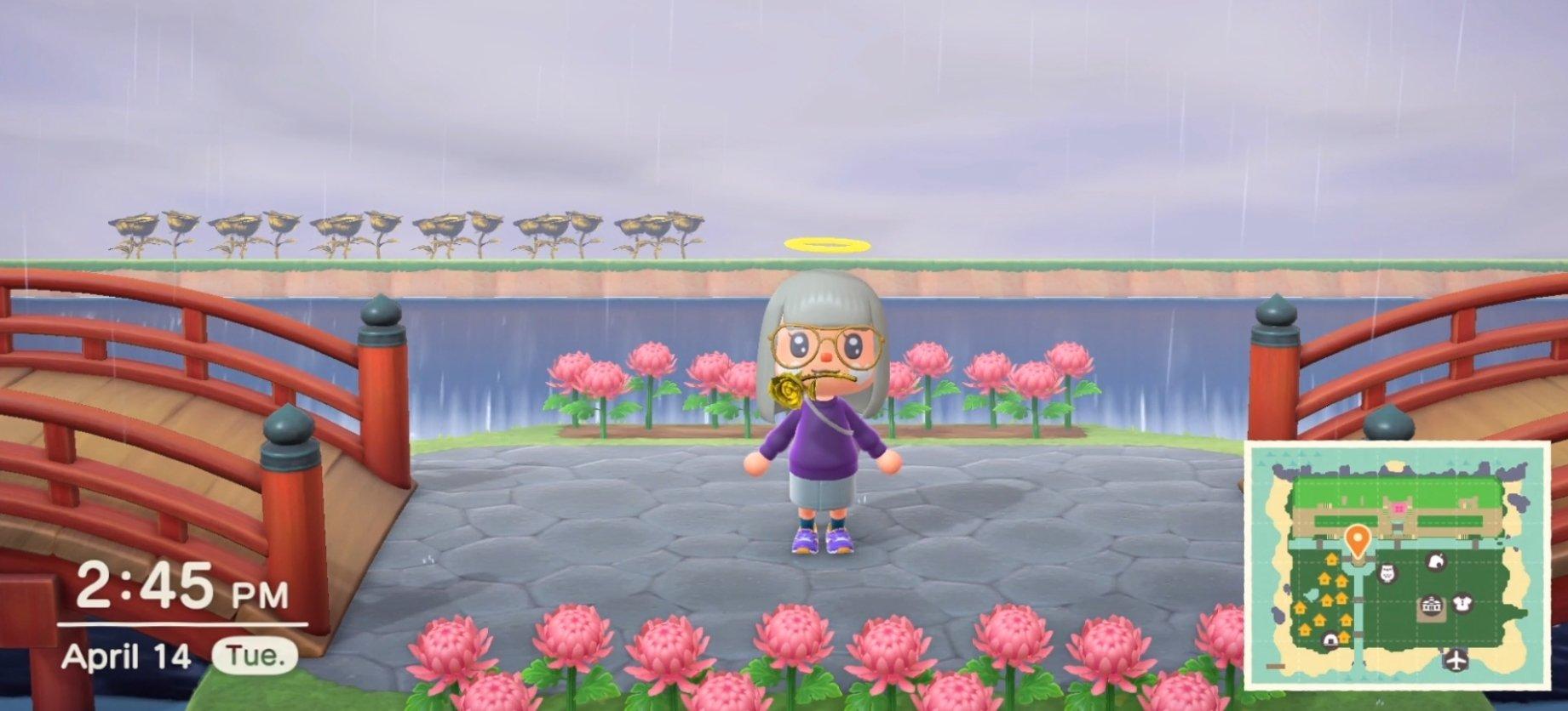 Screenshot of Animal Crossing