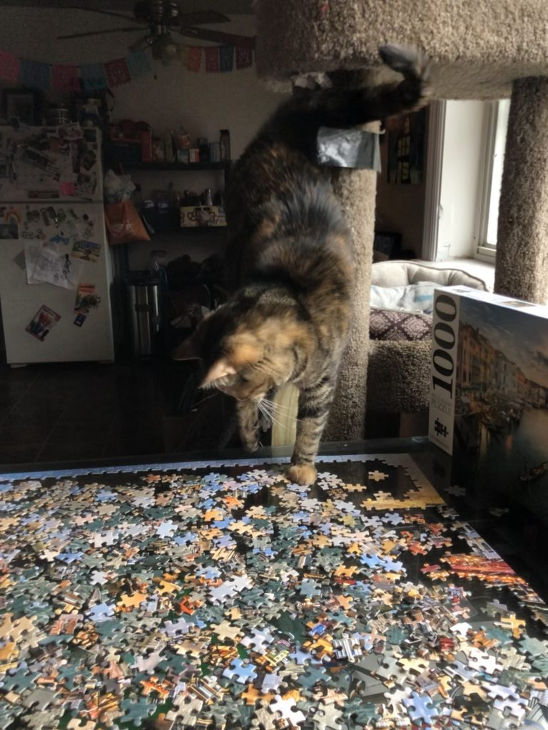 """Brown and gray tabby cat leans down from its perch to """"help"""" Olivia with her in progress puzzle."""