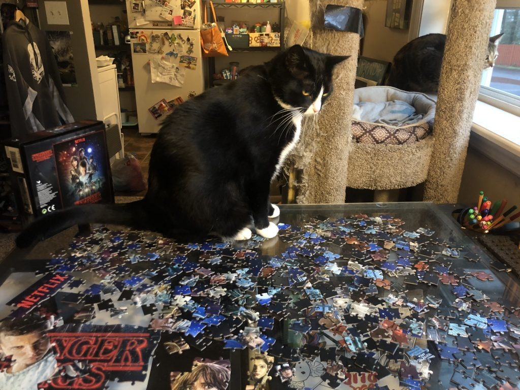 Black and white tuxedo cat sits on Olivia's in progress puzzle.
