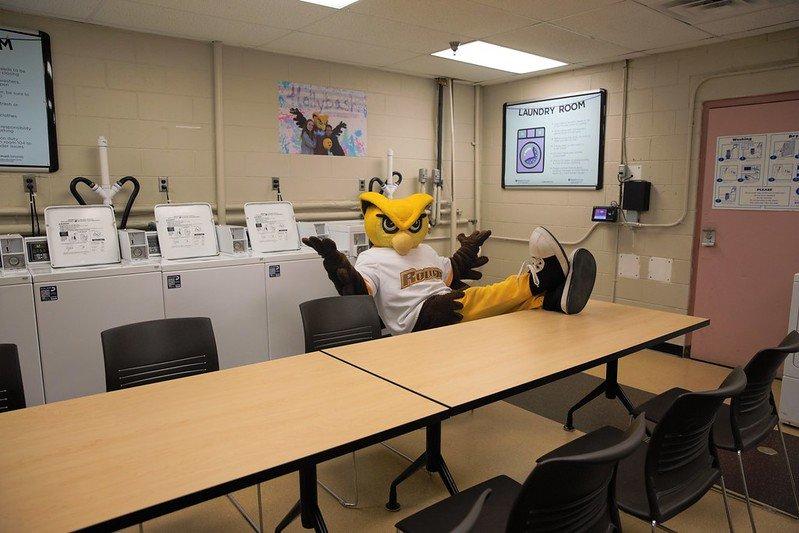 Rowan mascot sitting in a Rowan laundry room.