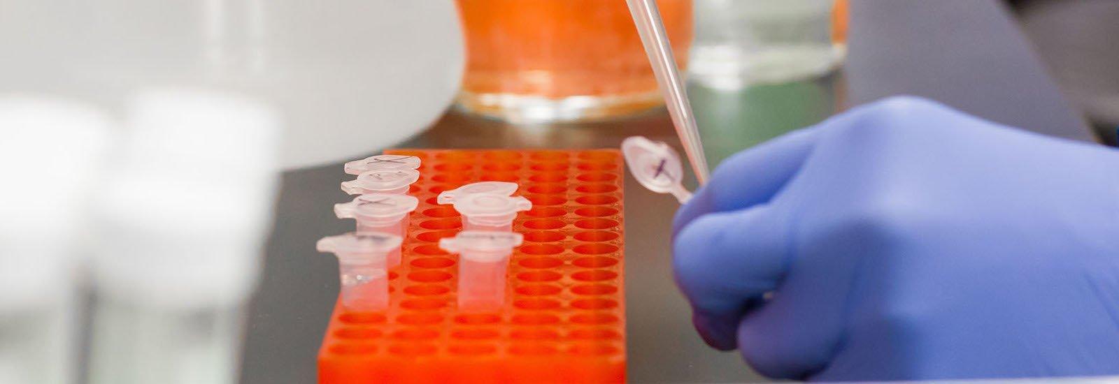 Stock image of biology test tubes