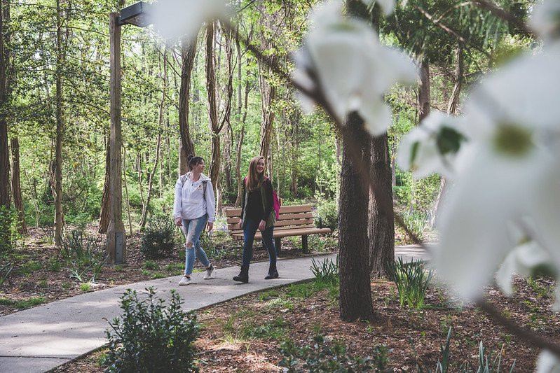 Two students walk on campus.