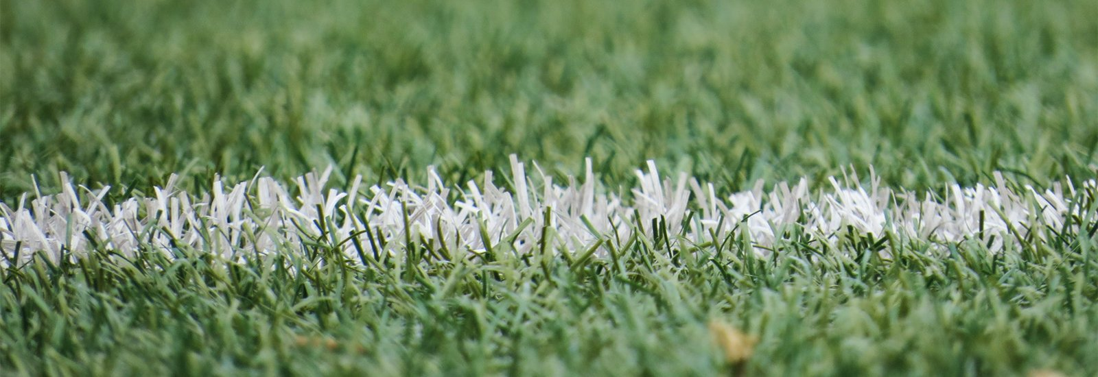 Close-up image of a sports field.