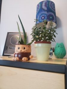 Two green plants inside of small pots. The pot on the left looks like a cat. There is also multiple other items on the table.