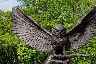 Shot of Owl Statue.